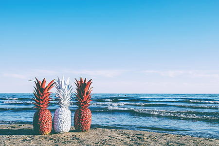 three red and white pineapples near sea