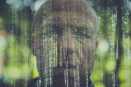 forest with man face background