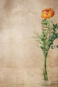 yellow and red flower in clear glass vase