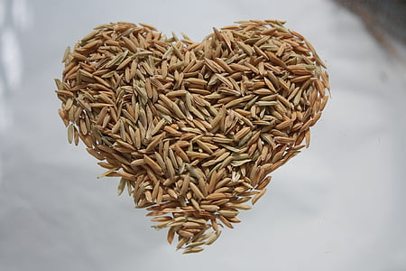 heart shaped rice grain on clear surface