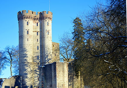 grey and black castle near tall trees under blue sky at daytime