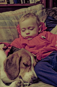 baby sleeping beside sleeping dog inside a room