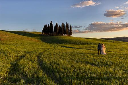 couple on grass field under sunny sky