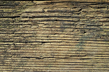 wood, board, texture, the background, wooden, jars