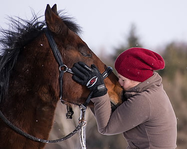 close-up photo of woman kissing horse nose