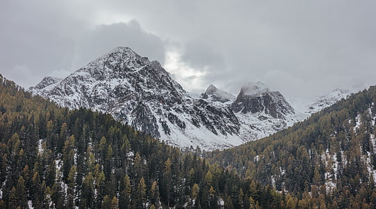landscape mountain with snow and trees