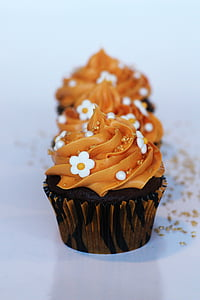 photo of brown icing covered cupcake