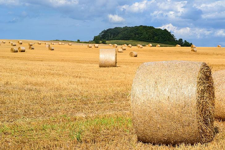 brown hay rolls on grass field