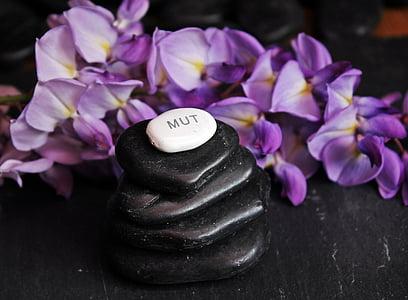 stack of black pebbles beside purple petaled flowers
