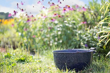 tilt shift photo of bowl