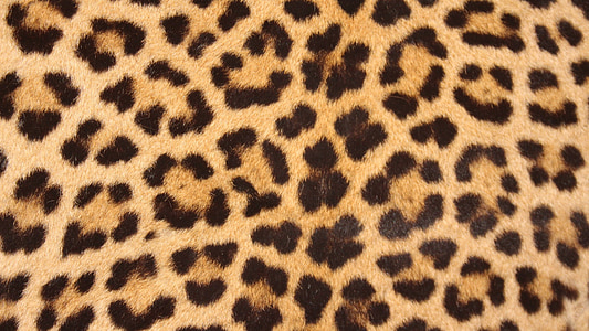 brown and black leopard textile