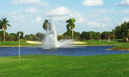water fountain in lagoon near trees