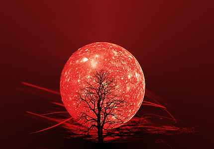 bare tree in front of red moon illustration