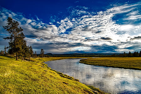 green grass land with river