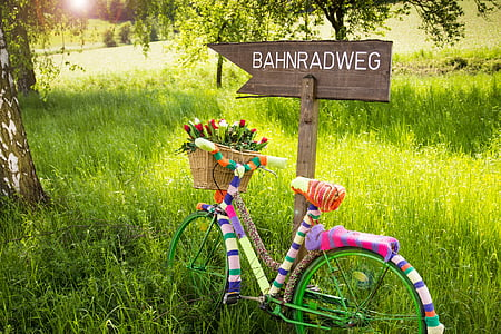 multicolored commuter bicycle beside brown wooden signage