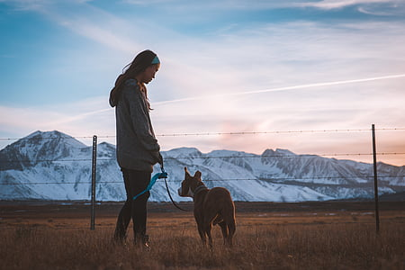woman in gray hoodie holding brown dog overlooking rocky mountains