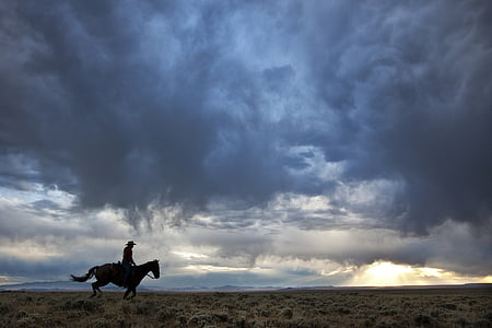 silhouette of person riding horse under cloudy sky during daytime