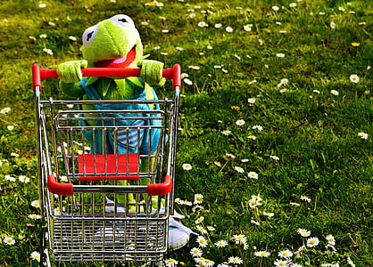 Kermit the frog holding shopping cart