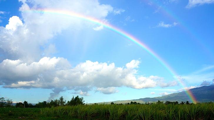 rainbow during daytime