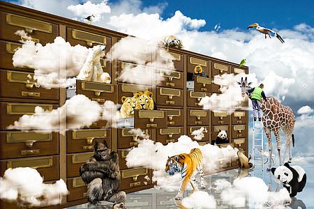 assorted-color animals illustration