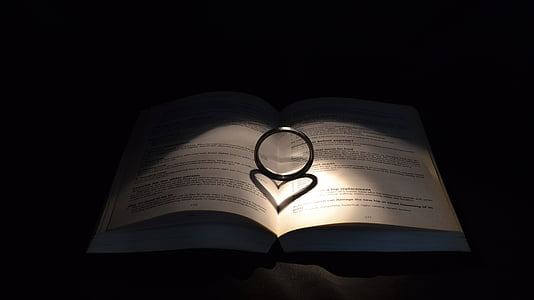 silver-colored ring on top of opened book