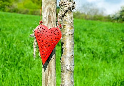red heart hanging decor on brown tree