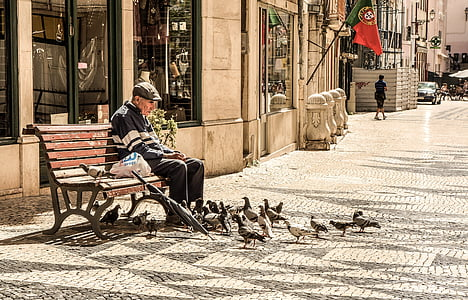 man sitting at bench surrounded by pigeons
