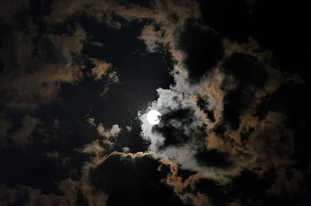 worm view photography of full moon
