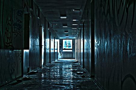 photo of hallway with doors