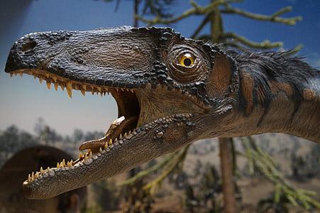 brown, black, and gray dinosaur