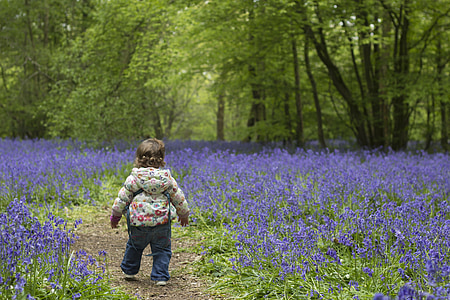 toddler surrounded by bed of lavender flowers