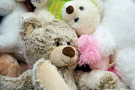 assorted bear plush toyys