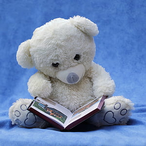 white teddy bear with brown book