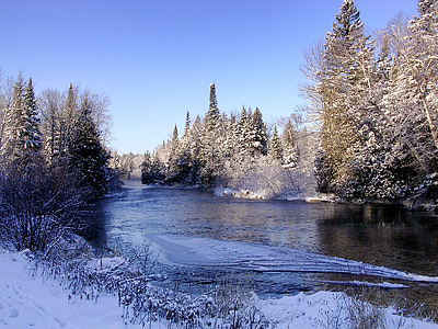 flowing water near trees during winter