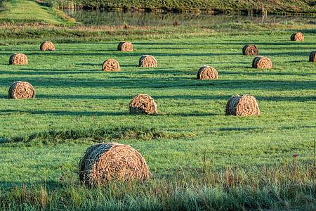 roll of hays on green grass field