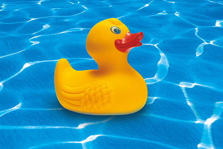 yellow rubber ducky in water