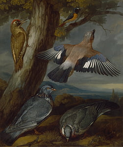 five birds painting