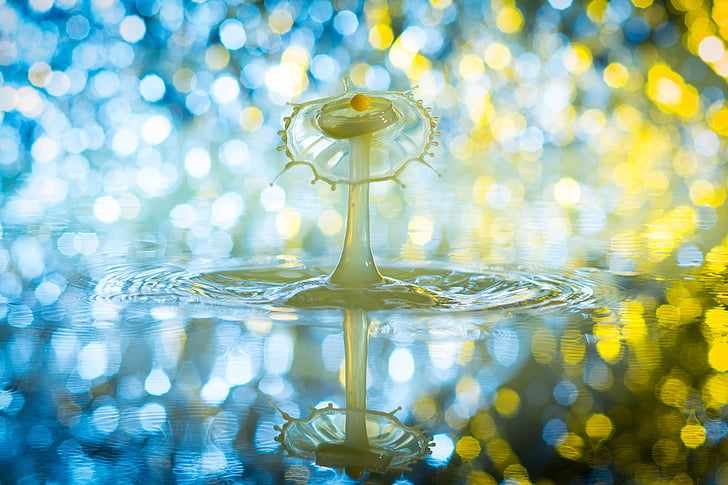 water droplets bokeh photography
