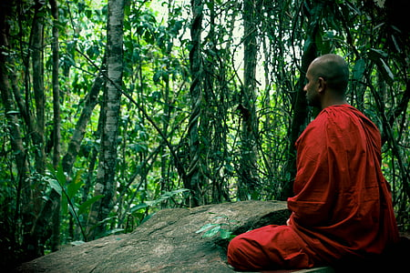 man in red suit meditating surrounded with trees