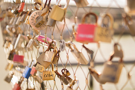 selective focus photography of padlocks on chain link fence