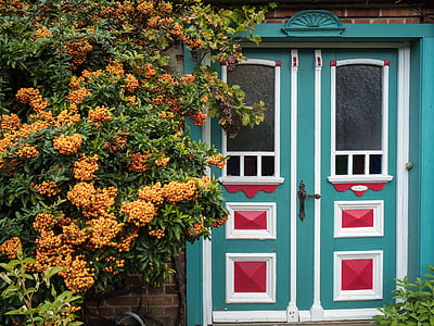 teal and white wooden door beside green leaded plant