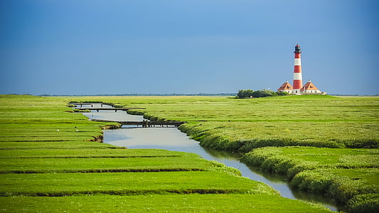 lighthouse surrounded by greeneries