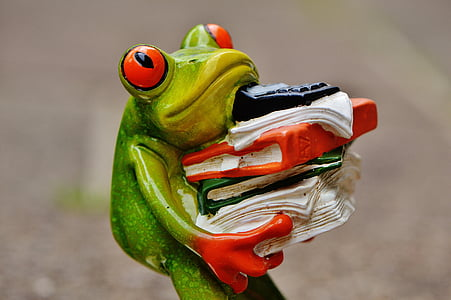 green tree frog carrying books figurine