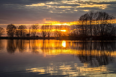 photo of trees near body of water during golden hour