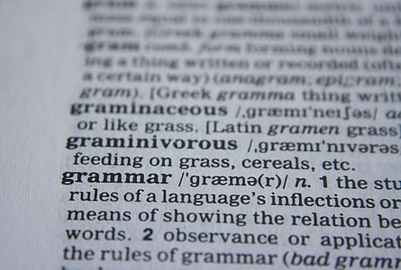 grammar text book page