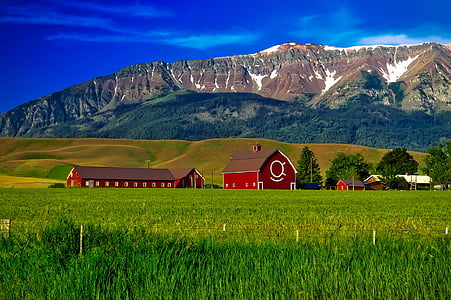 red wooden barn beside hill and mountain under blue sky