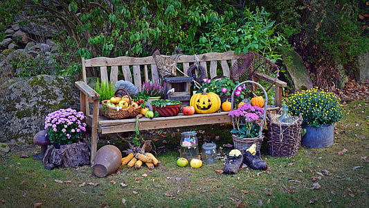 fruits on bench chair near plants
