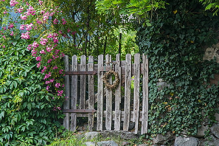 brown gate between plant fence