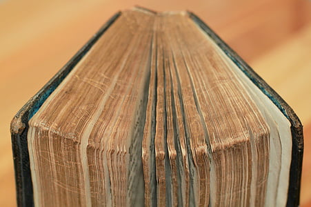 selective focus photograph of brown and black book