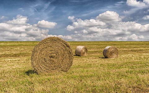 three hay bales on grass field